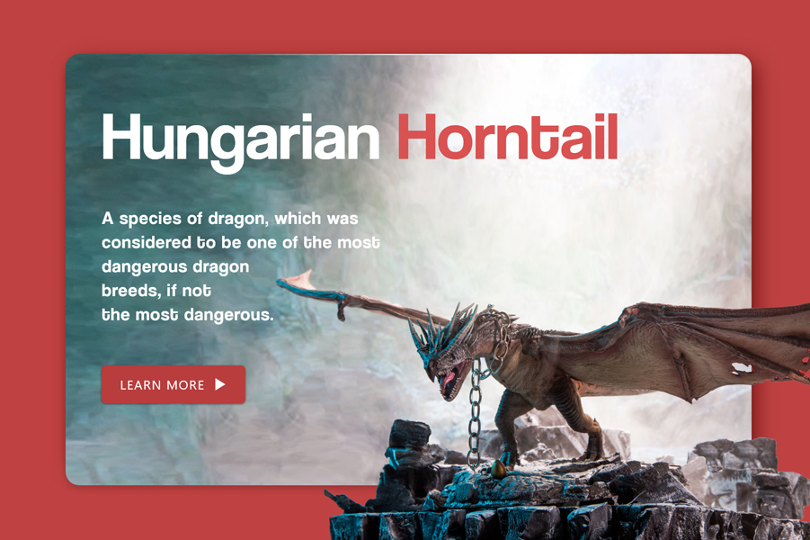 Hungarian Horntail –  UI concept